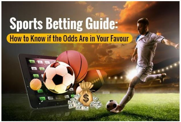 sports betting site
