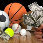 The betting on niche sports which can give good money